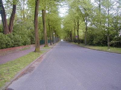 Eine typische Landstraße